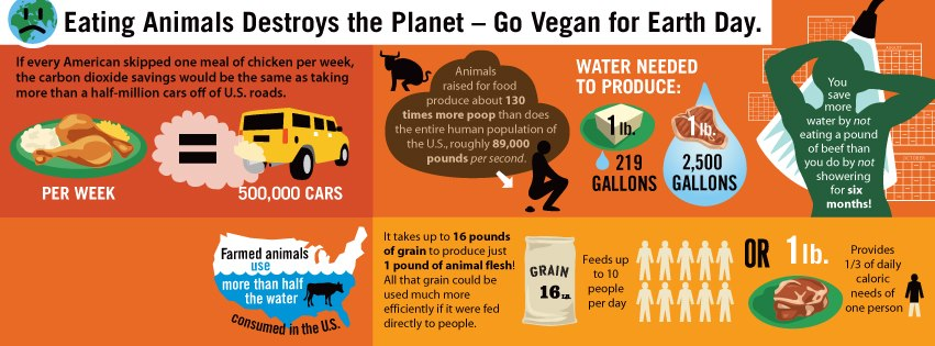 is it bad to eat meat and dairy together vegan earth day infographic recipes for compassion 648