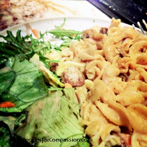 Mac n Cheese 4 copyright Recipes for Compassion Vegan Cookbook by Meghan Oona Clifford