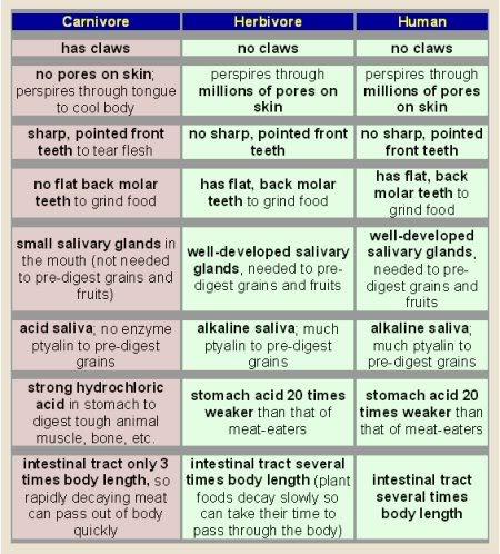 vegan-meat-eater-chart