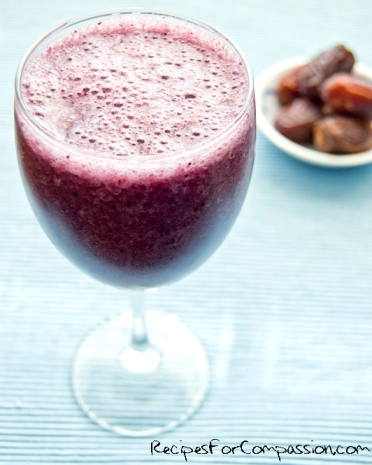 Blueberry Smoothie by rfc blog
