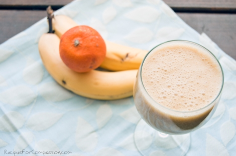 Creamsicle Smoothie by Recipes for Compassion blog