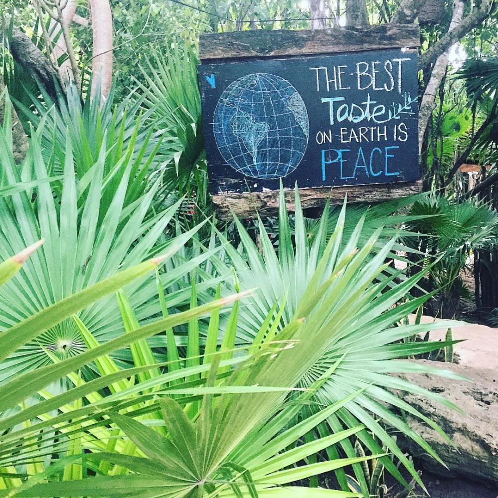 vegan travel, vegan travels, vegan travellers, how to travel as a vegan, vegan travelers, vegan travel tips, happycow, happy cow, vegan passport, restaurare, tulum vegan mexico