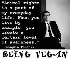 Joaquin Phoenix on going vegan, Joaquin Phoenix vegan, is Joaquin Phoenix vegan?, is Joaquin Phoenix vegan?, veganism Joaquin Phoenix, vegan Joaquin Phoenix, Joaquin Phoenix about veganism, vegan celebrities, vegan celebrity quotes, who are some famous vegans?, famous vegan quotes, famous vegans